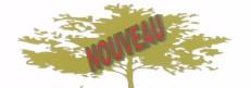 """DÉCO LOGIGUE (papier 100% recyclé écologiquement). Produit québecois en """"INSTANCE DE BREVET"""" inventé par Mario Lessard et Christine Thibeault."""