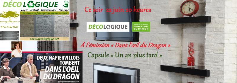 Promo Dans l'oeil du dragon capsule 1 an plus tard saison 4 dernière émission 22062015 PHOTOS Final